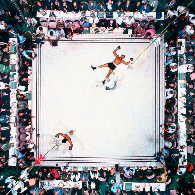 boxingprofessional