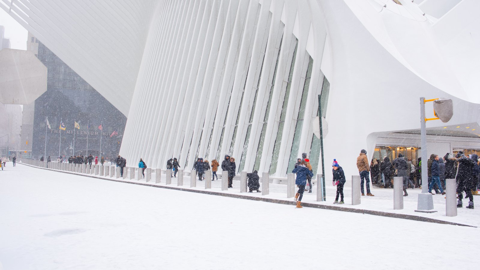 How to Stay Active During Winter in New York